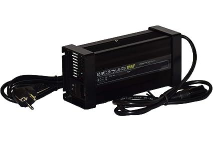 BatteryLabs MegaCharge Series - Cargador de batería de plomo ...