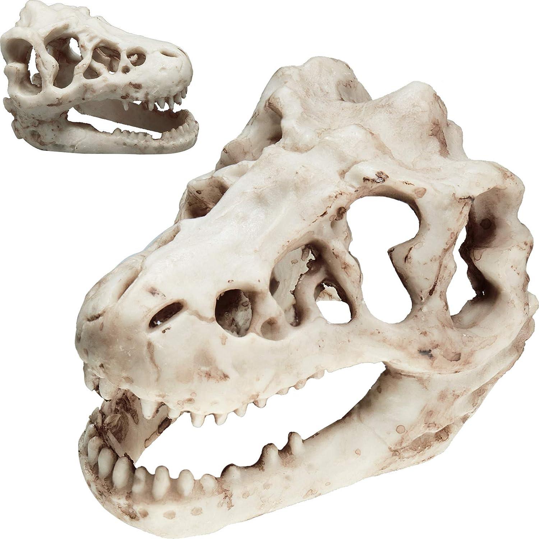 Weewooday 2 Pieces Aquarium Decoration Resin Artificial Dinosaur Skull Skeleton Ornament Small Dinosaur Skull Aquarium Decor for Fish Tank Aquarium Cave Landscape Pet Reptile House Decorations