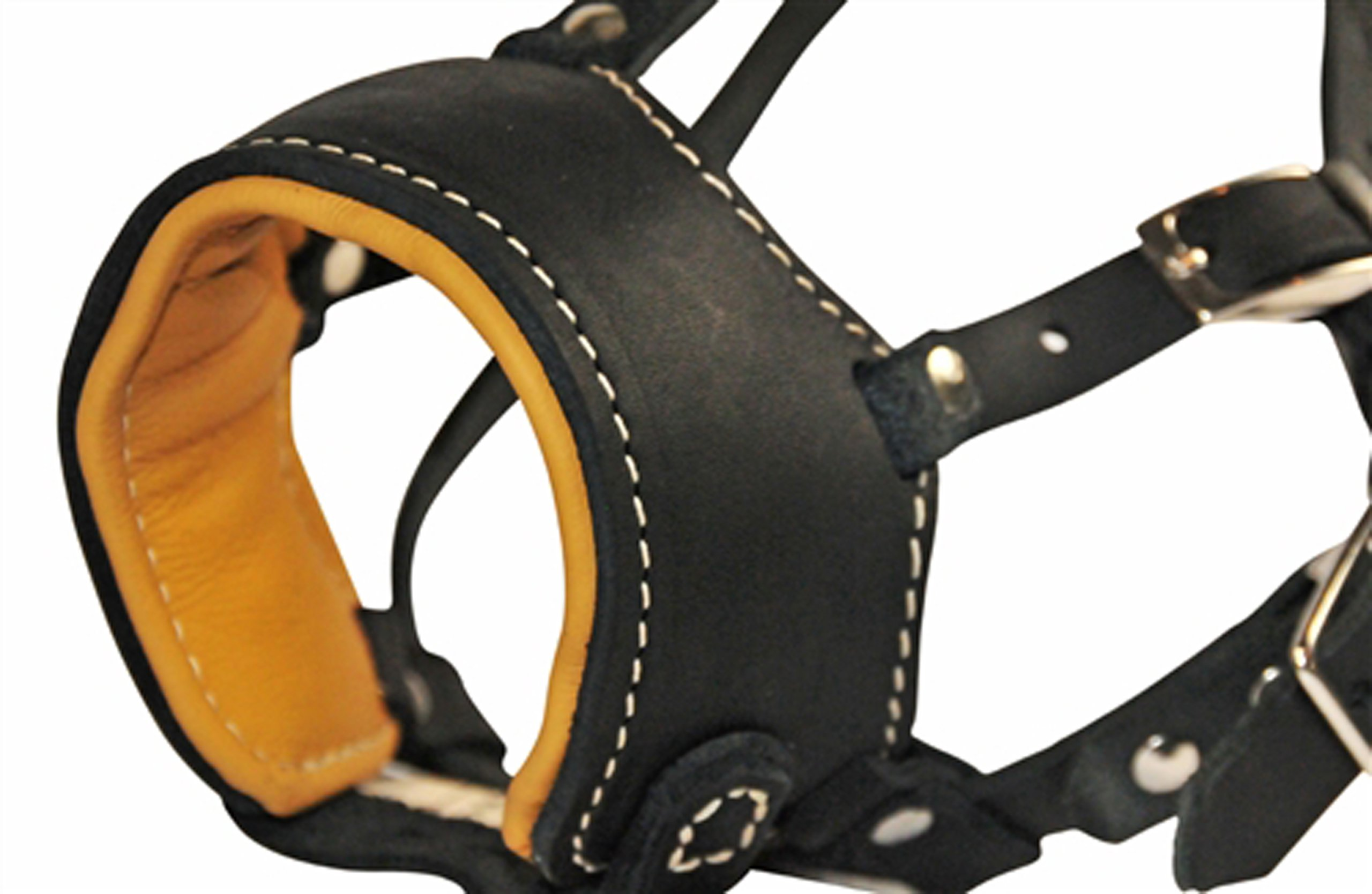 Dean & Tyler Royal Control Leather Muzzle, Large by Dean & Tyler (Image #2)