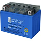 Mighty Max Battery YTZ12S 12V 11AH 210CCA Gel Motorcycle Battery Brand Product