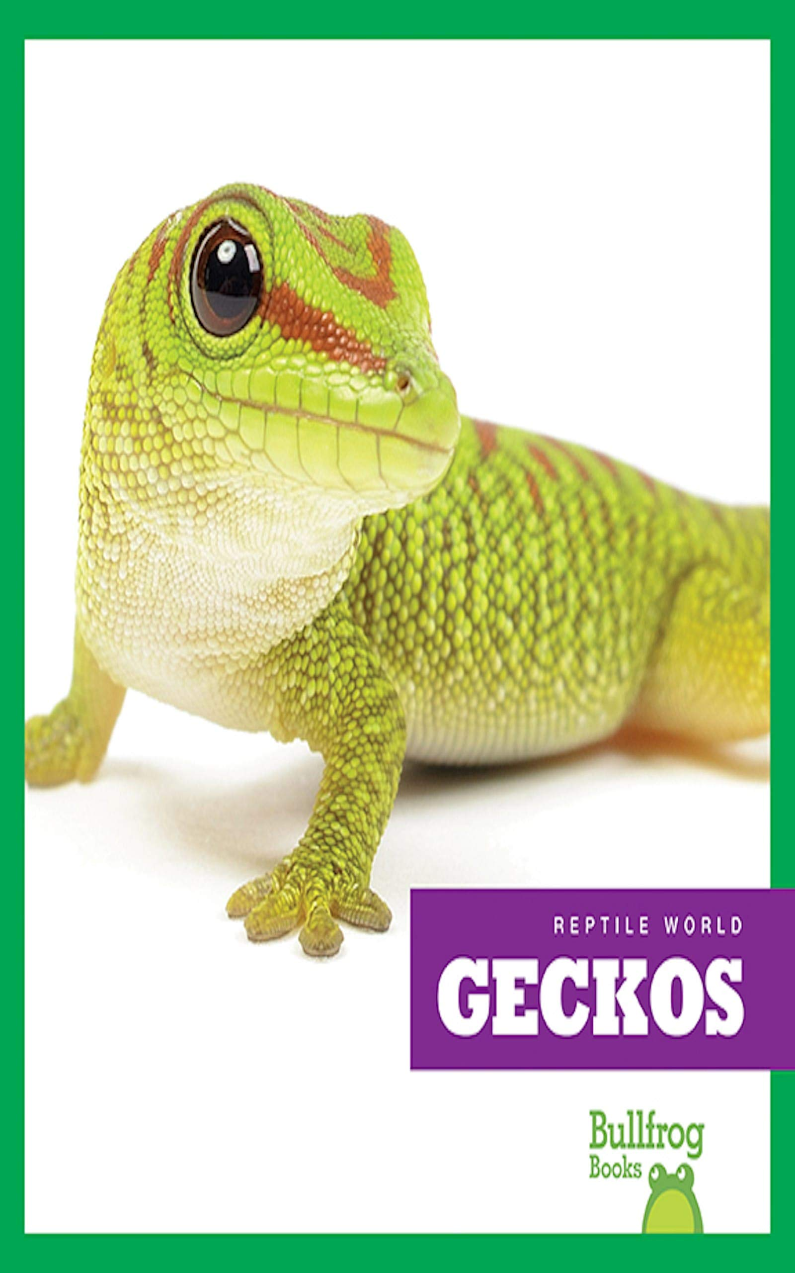 Geckos (Reptile World) (English Edition)