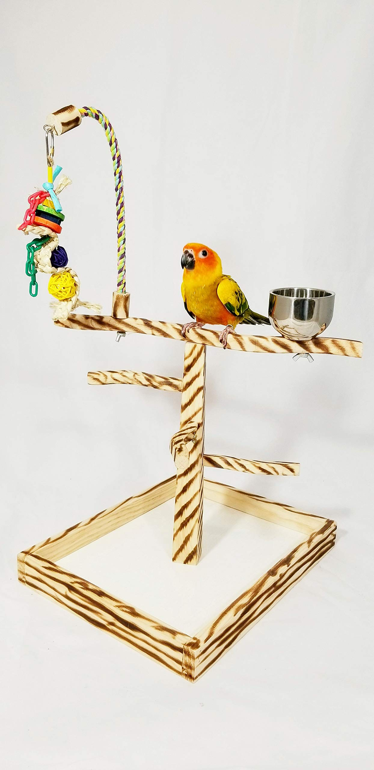 Birds LOVE Bird Play Gym Tabletop w Cup, Toy Hanger and Toy, Bengal TigerTail Stand - Small by Birds LOVE