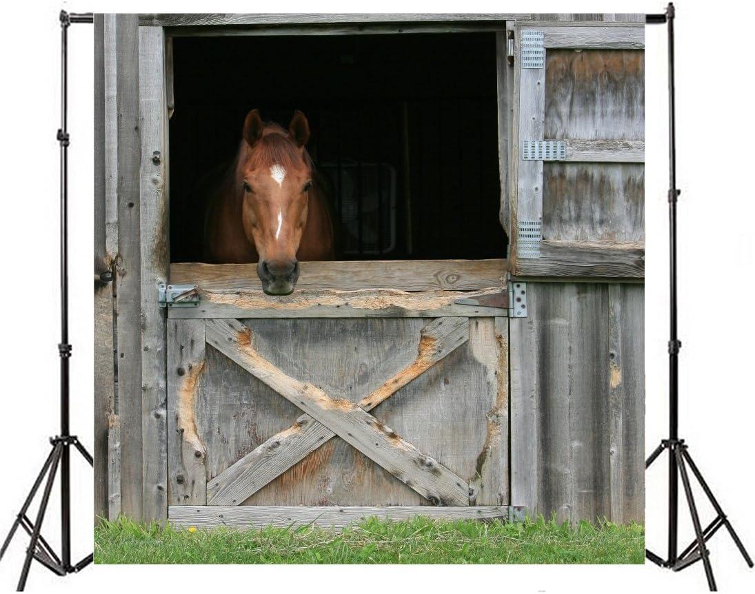 GoEoo 8x10ft Farm Grassland Barn Door Backdrop Wooden Horse Stable Saloon Gate Doorway Western Back Drop Background Portrait Travel Photography Studio Props