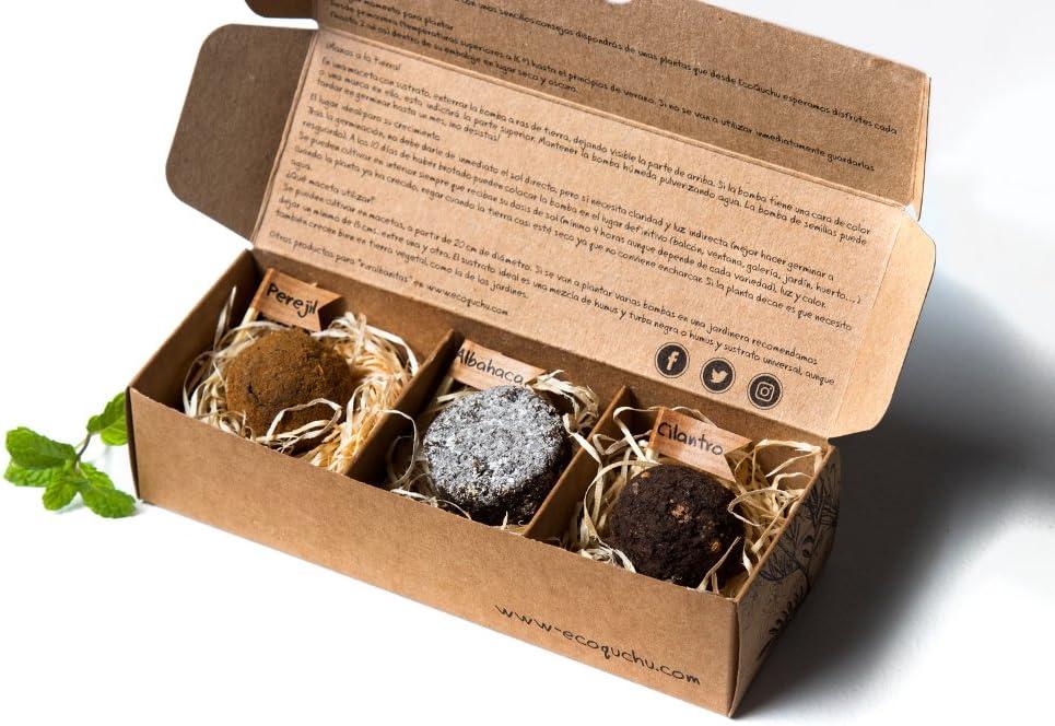 Pack 6 bombas de semillas aromáticas (6, 6 bombas de semillas ...