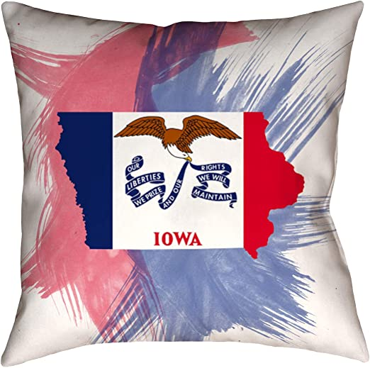 ArtVerse Katelyn Smith 20 x 20 Cotton Twill Double Sided Print with Concealed Zipper /& Insert Illinois Pillow