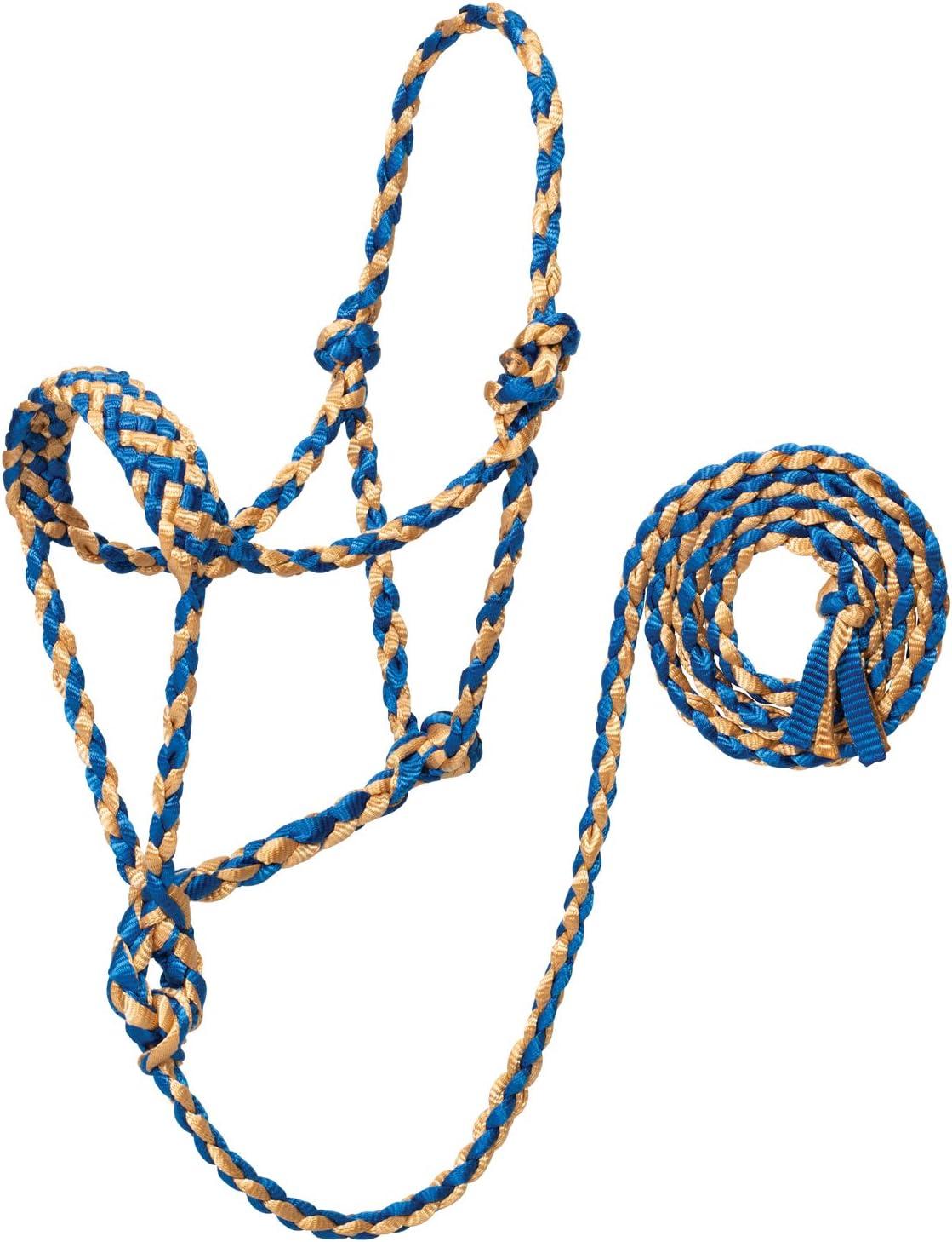 Weaver レザー編みロープホルター 6フィートのリード付き 平均