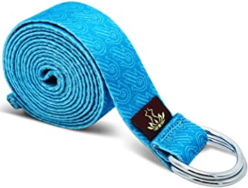 Amazon.com : Heathyoga Yoga Strap Made from Durable Cotton ...