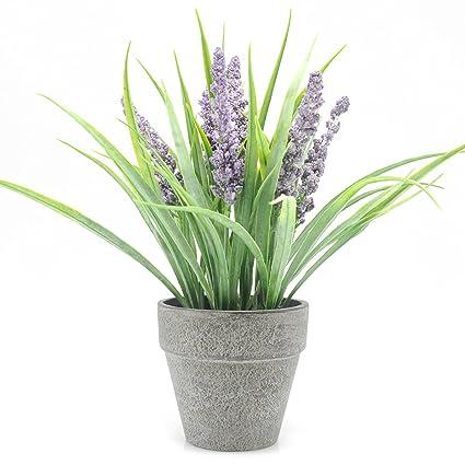 Velener Mini Artificial Plants Lavender In Pot For Home Decor (Purple)