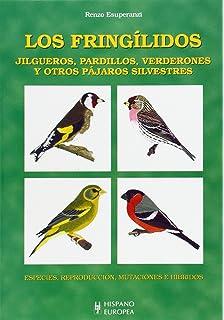 Jilgueros, pardillos, verderones y otros pájaros silvestres
