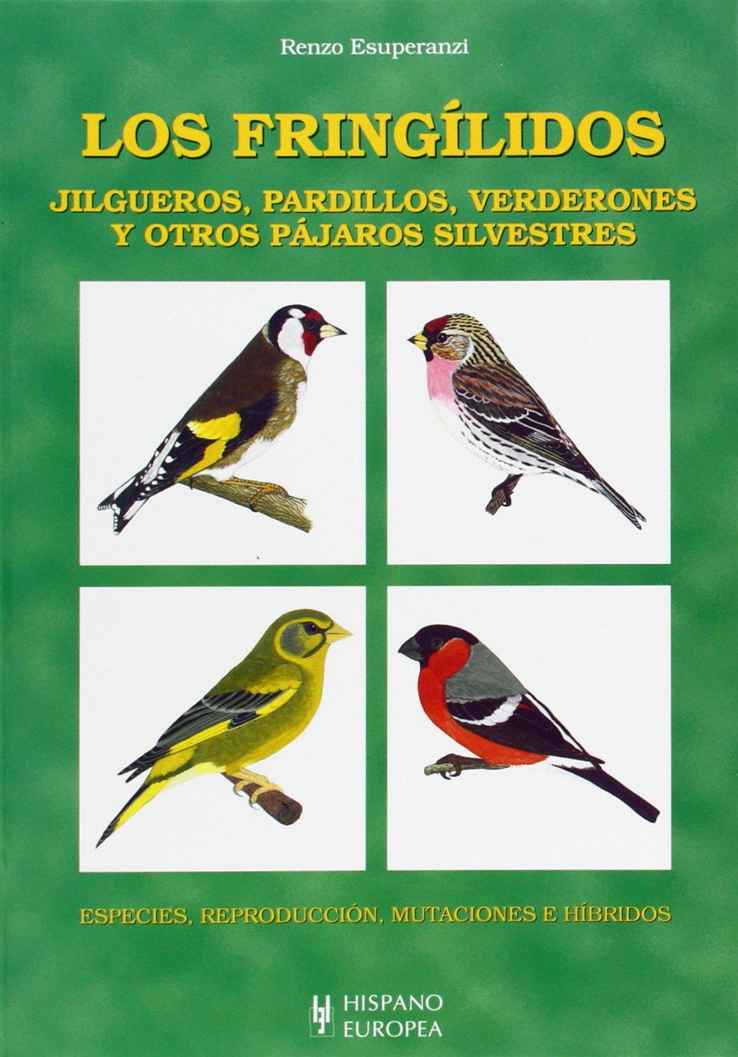 Los fringílidos. Jilgueros, pardillos, verderones y otros pájaros silvestres: Amazon.es: Esuperanzi, Renzo: Libros