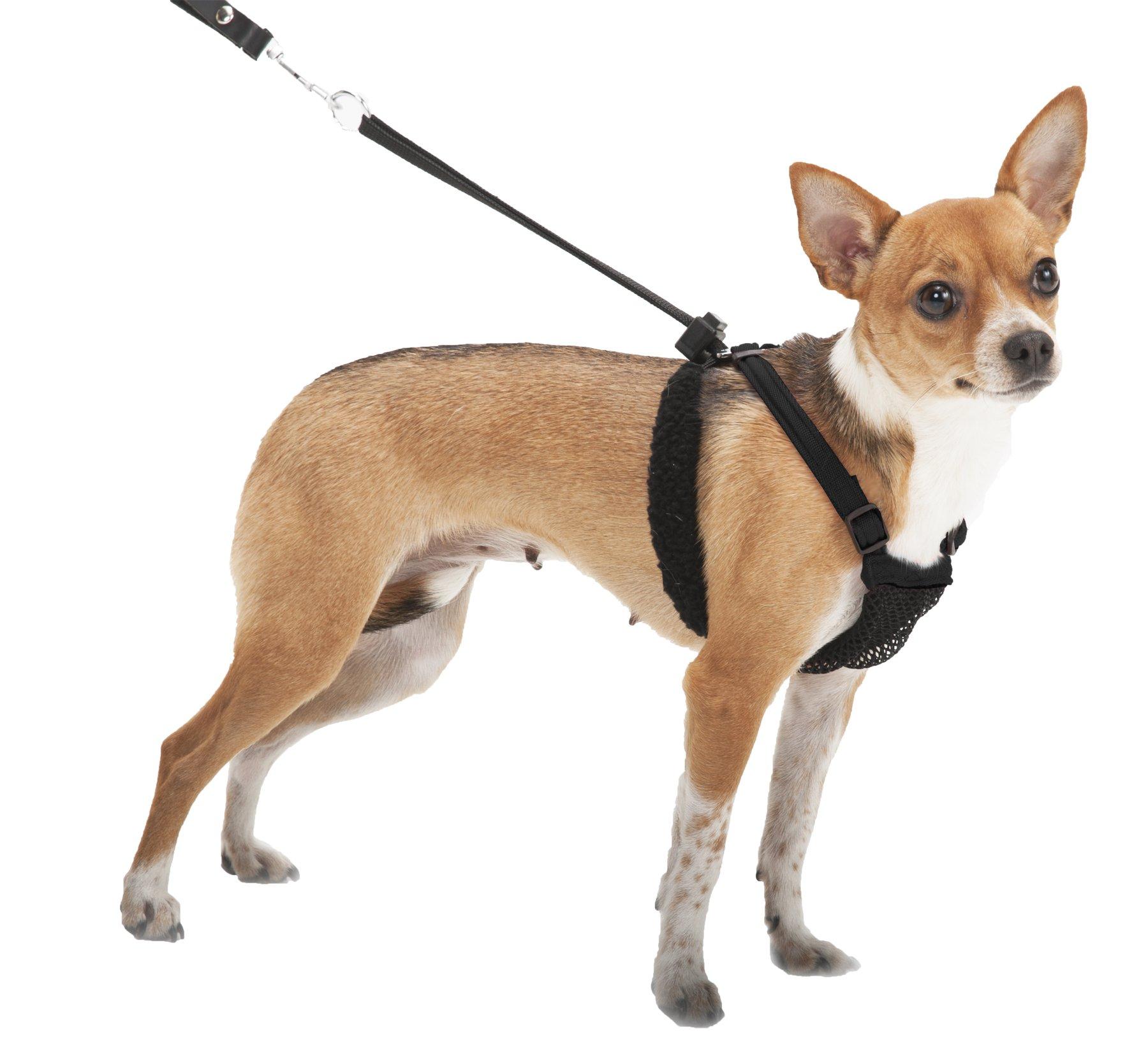SPORN No Pull Dog Harness, Black, Small