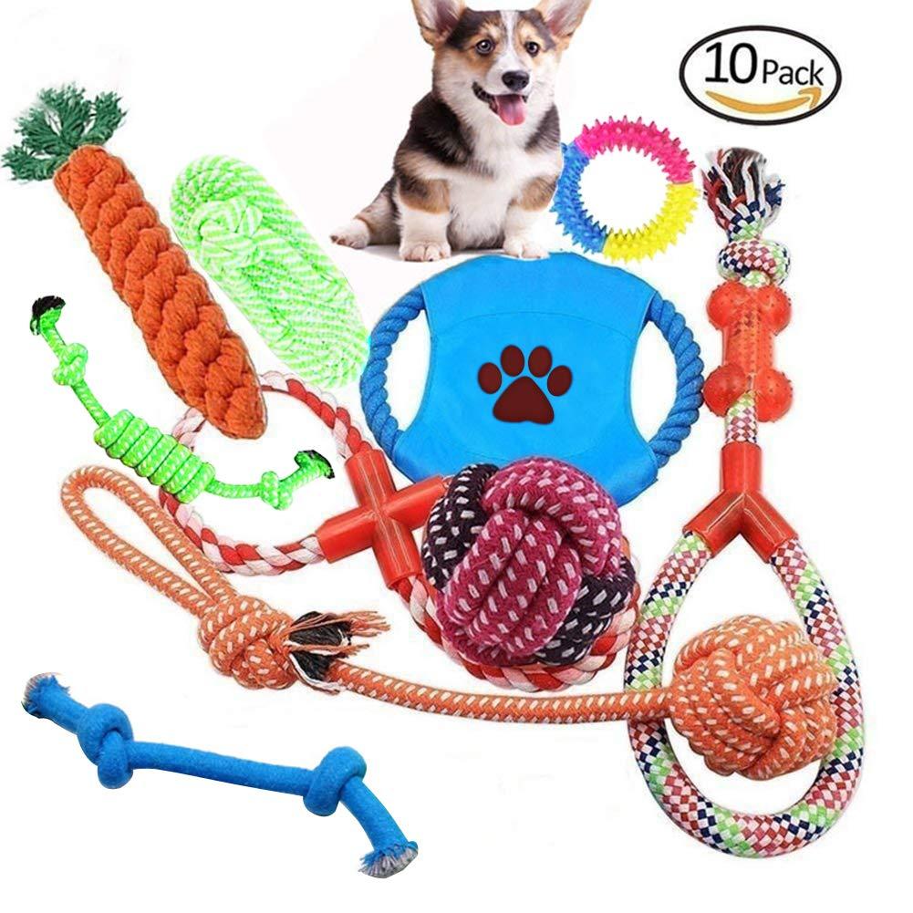 Vielseitiges robustes Hundespielzeug
