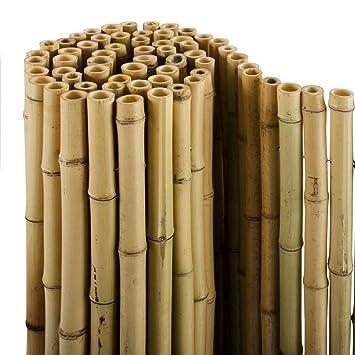 casa pura bambus sichtschutz bambusmatte in premiumqualitat massive bambusrohre naturbelassen drei