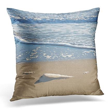 Amazon.com: Sdamase Throw Pillow Cover Blue Abstract Seafoam ...