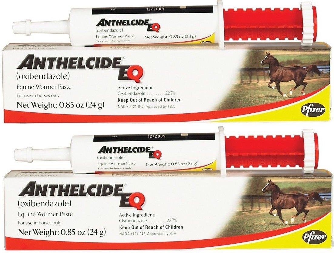 Pfizer Anthelcide EQ Equine Wormer Paste De-Wormer Horse (2 Tubes) by Pfizer