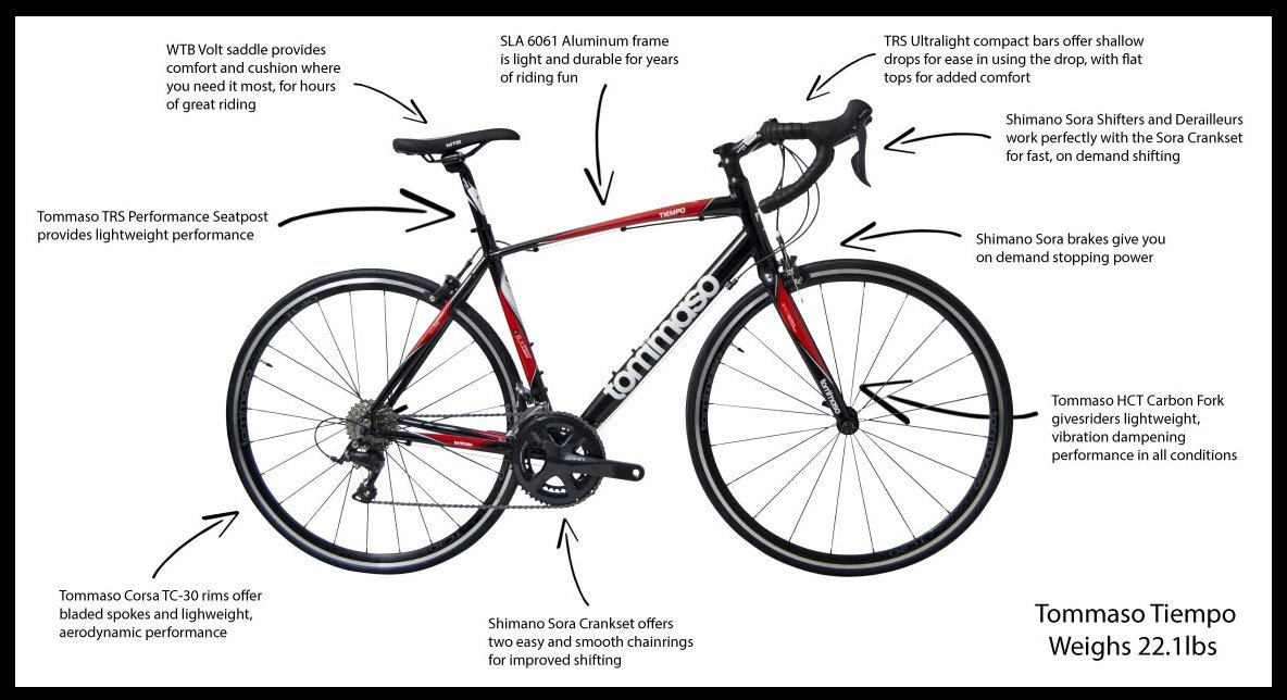 Amazon.com : Tommaso Tiempo Compact Road Bike w/ Carbon Fork ...