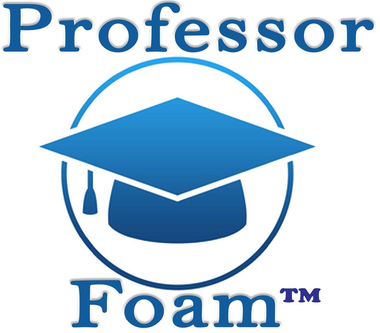 Professor Foam IPM IP-02 IP02 SST Barrel Transfer Pump fits Graco 810203