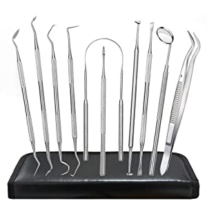 Dental Tools, 10 Pack Dental Picks Teeth Cleaning Oral Care Kit, Stainless Steel Calculus Plaque Remover Hygiene Set, Dental Mirror Tartar Remover Scraper Tooth Pick for Dentist Personal Pet Home Use