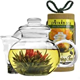 Primula Blossom 40 oz Glass Teapot Gift Set - Includes Infuser, 12 Flowering Teas