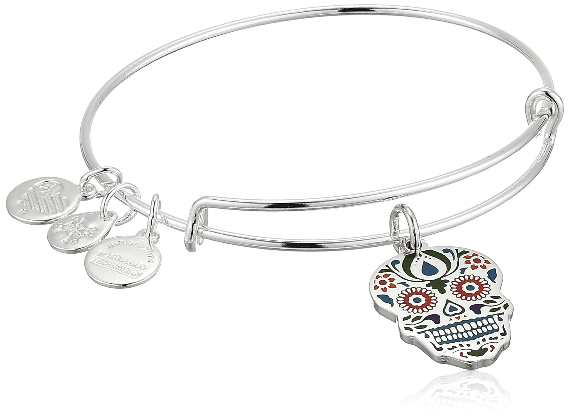 Alex and Ani Color Infusion, Calavera EWB Shiny Silver Bangle Bracelet