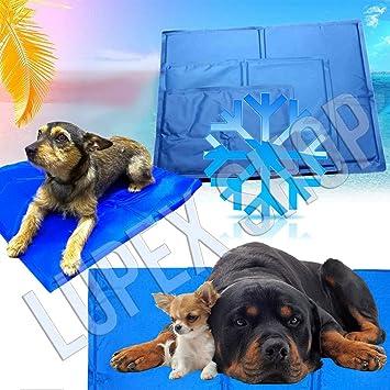 Rebeca Shop - 37102 - Alfombra de gel refrescante para perros y gatos, 40 × 50 cm -: Amazon.es: Productos para mascotas