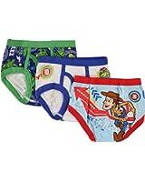 Toy Story Boys Underwear Briefs by Hanes