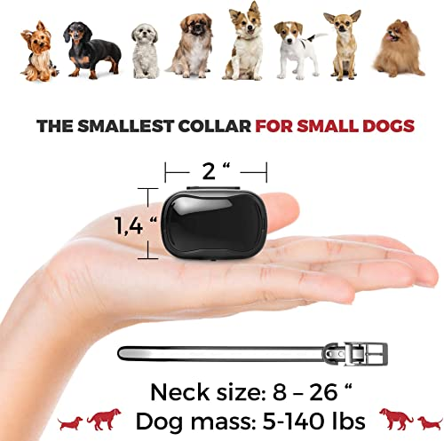 Enrivik Small Size Dog Training Collar with Remote – Perfect for Small Dogs 5-15lbs – Waterproof 1000 Feet Range