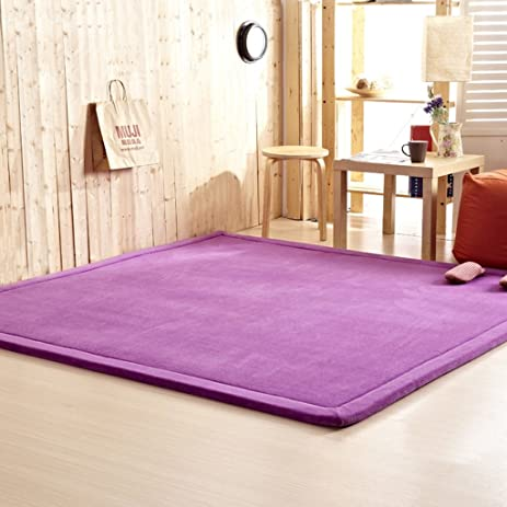Amazon.com: @home rugs 2CM Thick Coral Fleece Mat Carpet 1802002CM ...