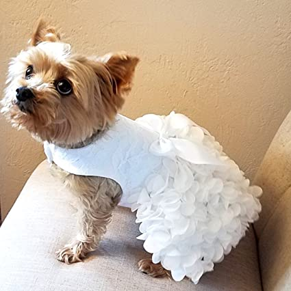Amazon Com Dog Wedding Dress White Lace And Ruffles Small Pet
