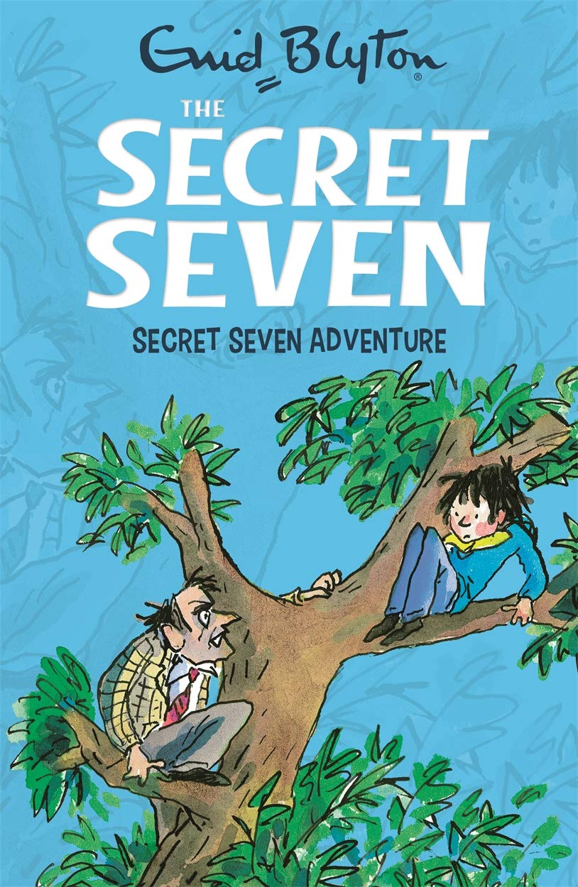 Secret Seven Adventure: Book 2: Amazon.co.uk: Blyton, Enid, Wane, Esther:  Books