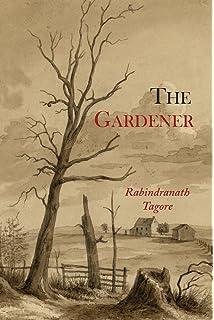 Three Damen Von Rabindranath Tagore taschenbuch Neues Buch, Gratis