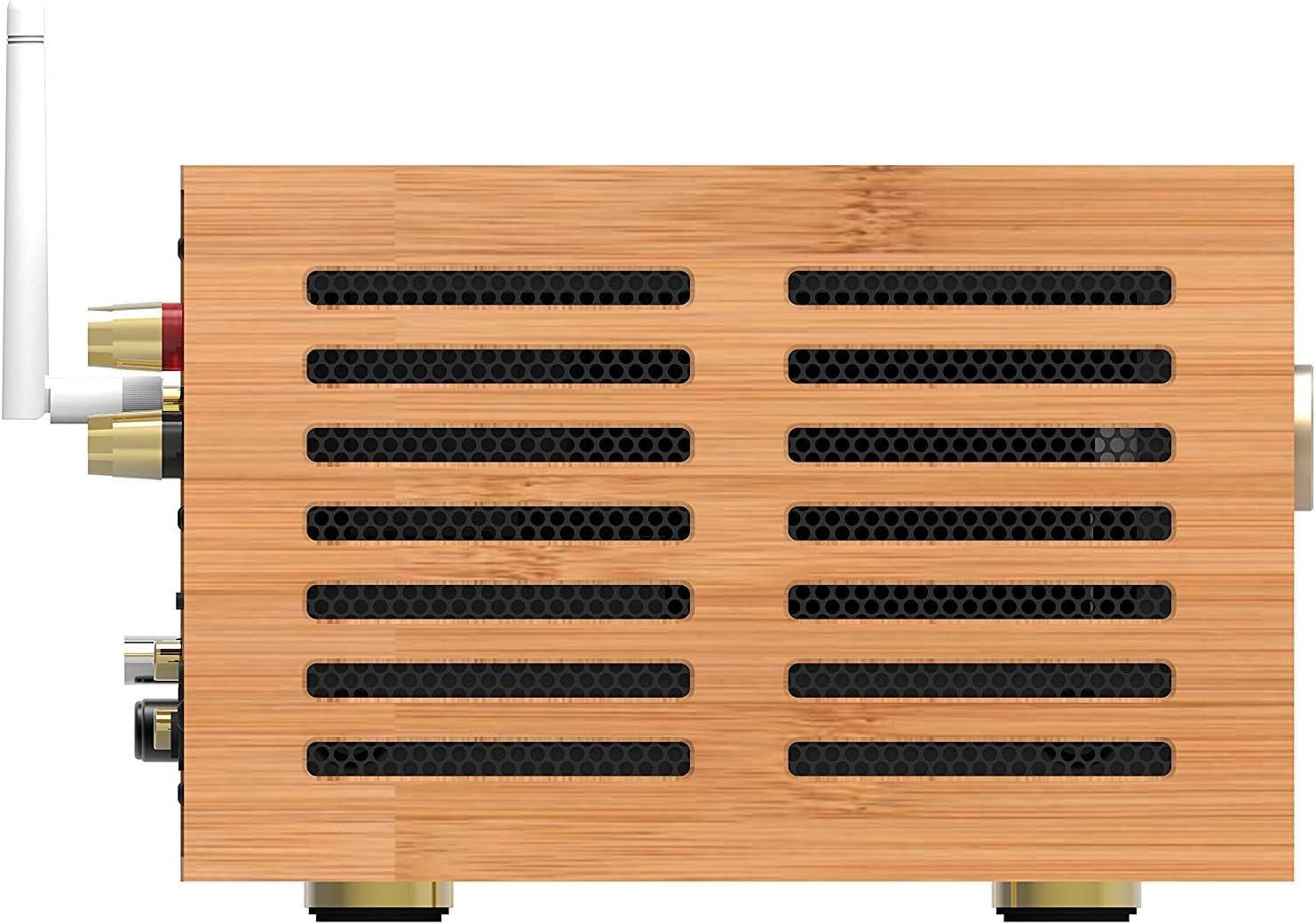 Amazon.com: iFi Audio Retro 50 Tubo de aspiración integrado ...