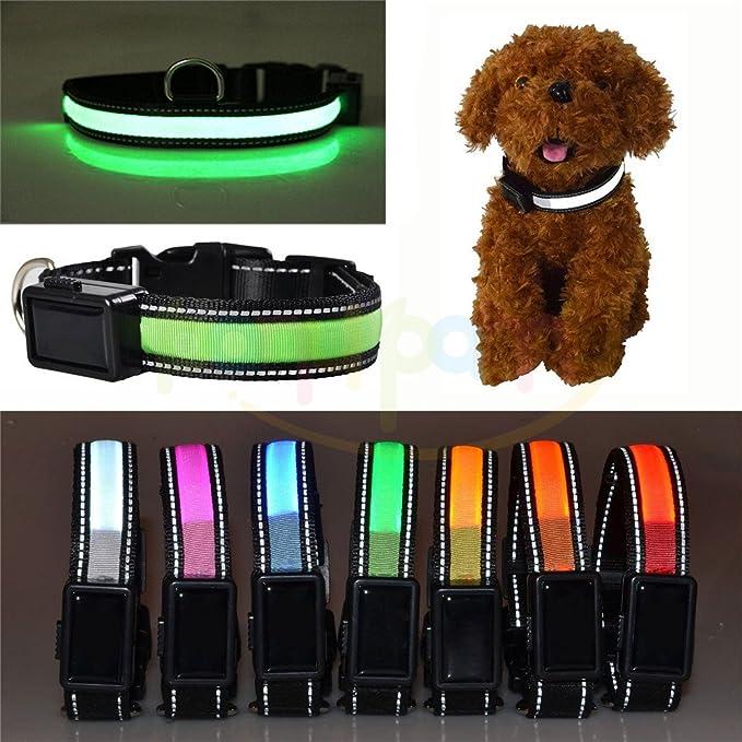 1 opinioni per USB Ricaricabile Collare per cane con luce LED e regolabile Riflettente