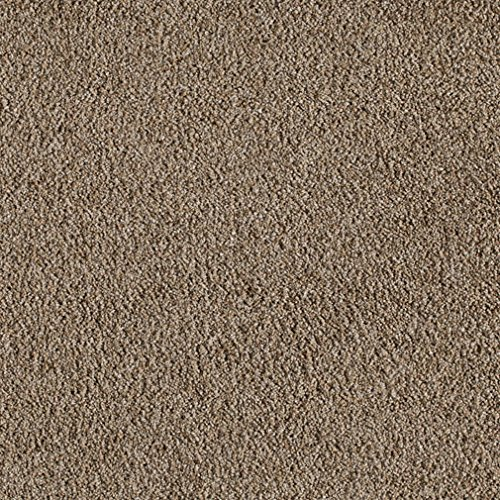 3' Edge Fine (Royal Suite Indoor Cut Pile Area Rug for Home with Premium BOUND Polyester Edges. (Fine Quality, 3'x5'))