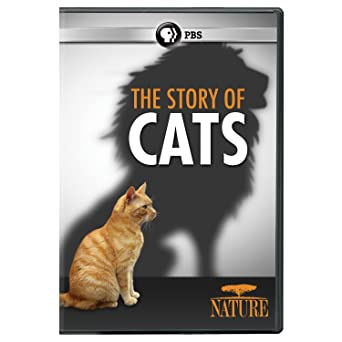 amazon com nature the story of cats dvd n a movies tv
