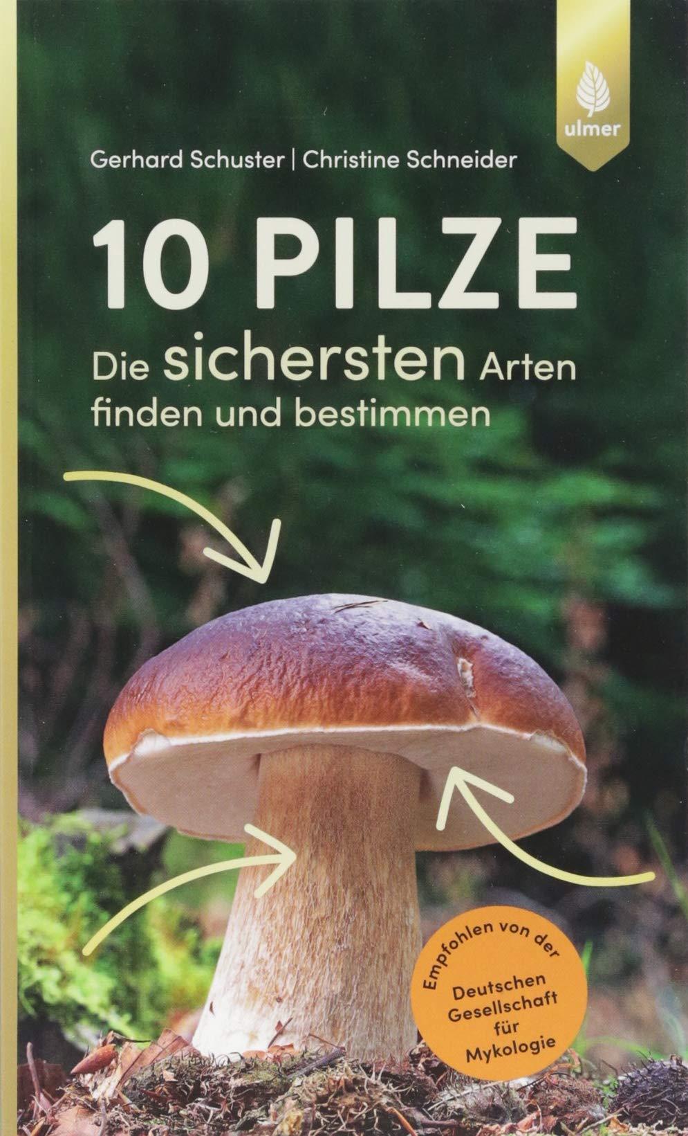 deutsche gesellschaft für mykologie