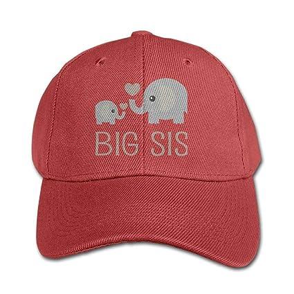 fc2b62f042da7 Amazon.com  WHROOER Big Sis Elephant Heart Kids Trucker Baseball Cap ...
