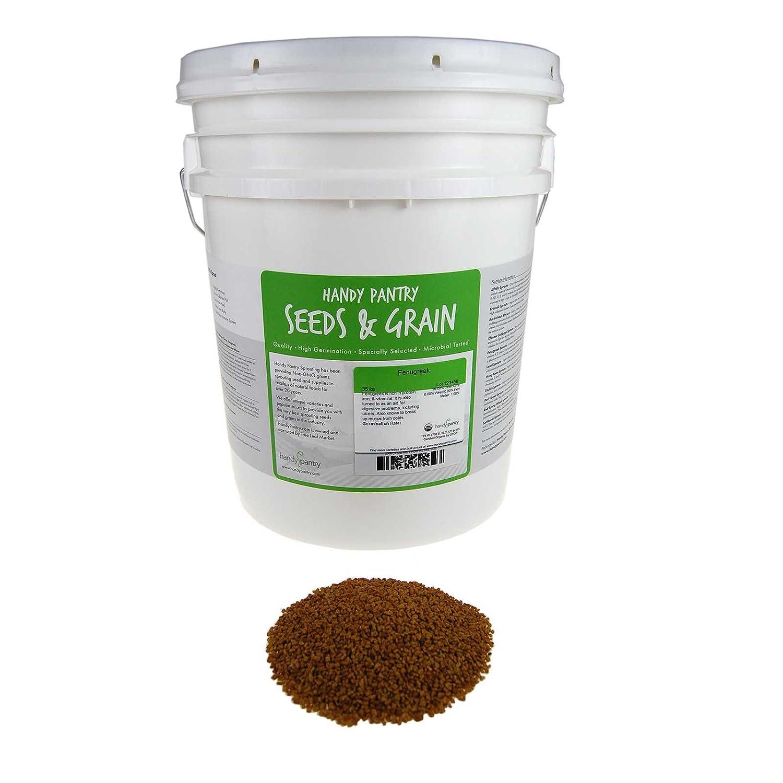 Amazon.com: Germ Line Fenugreek seeds – Handy Pantry marca ...