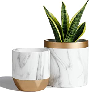 POTEY 053801 Ceramic Plant Pots Indoor - 6 inch Modern Large Cylinder Planter + 4.8 inch Medium Round Plant Pot, Marble Pattern Decorative with Golden Detailing Containers for Aloe Plants Flower