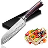 Santoku Knife - PAUDIN Super Sharp Kitchen Knife, 7 inch Multifunctional Japanese Chef Knife, German High Carbon…