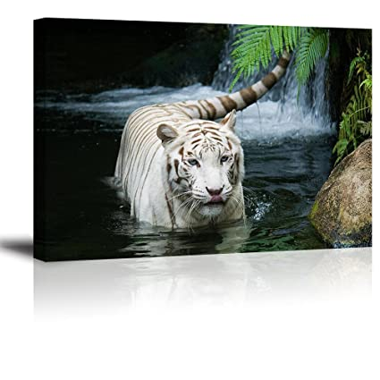 Charmant White Tiger Picture Decor For Bedroom, PIY Gorgeous Wall Art Of Ivory  Tigress In Pond