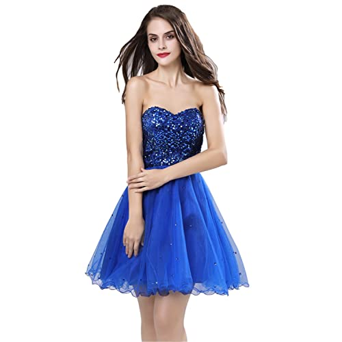Royal Blue Dress with Sequin: Amazon.com