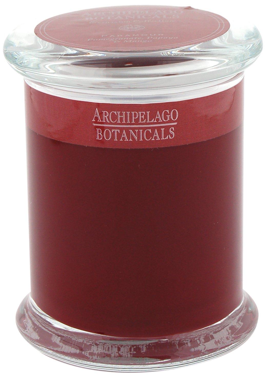 ARCHIPELAGO BOTANICALS Excursions Jar Candle 244 g Luna 244 g 11691