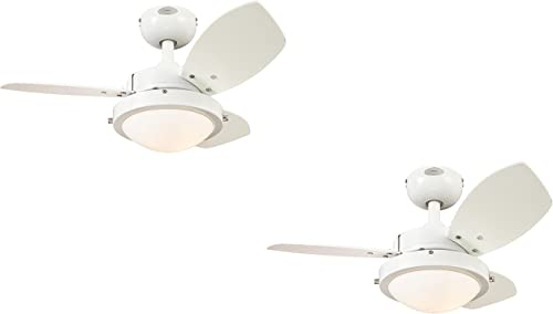 Westinghouse 7247200 Wengue Two-Light Reversible Three-Blade Indoor Ceiling Fan