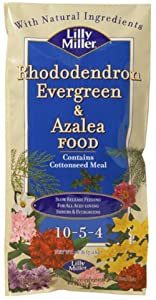 Lilly Miller Rhododendron Evergreen and Azalea Food
