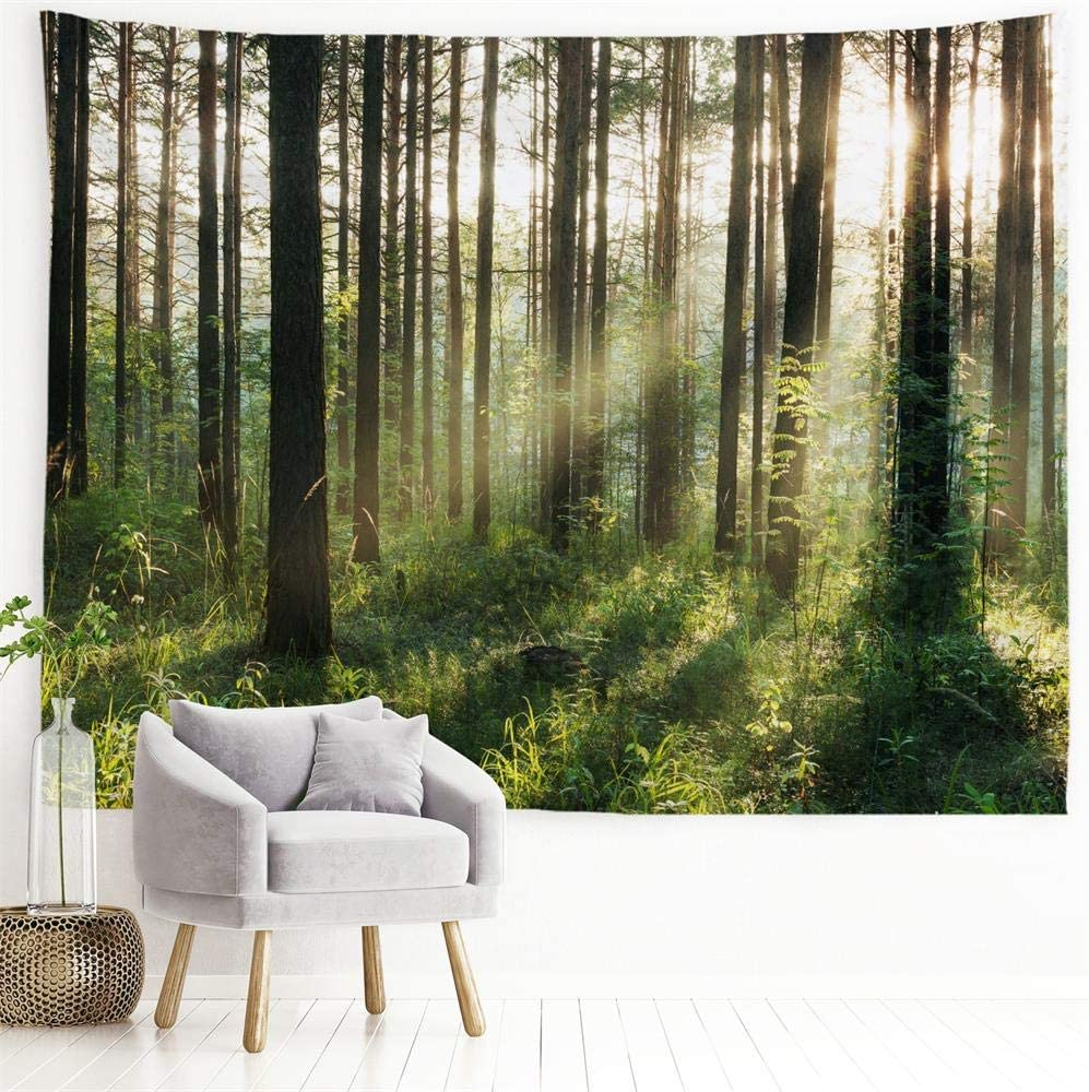 """PROCIDA Home Wall Hanging Nature Art Polyester Fabric Tree Theme Tapestry, Wall Decor for Dorm Room, Bedroom, Living Room, Nail Included - 60"""" W x 40"""" H (150cmx100cm) - Sunlight Forest"""