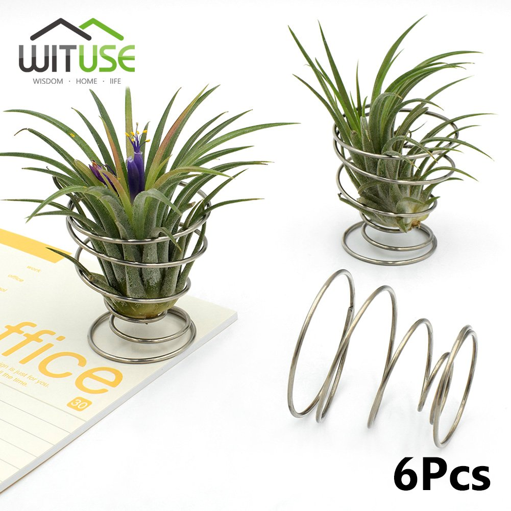 5cm Air Plant Tillandsia Metal Spring Stand Metal Holder Wedding Decor x6  Ltd