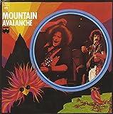 Avalanche / Vinyl record [Vinyl-LP]