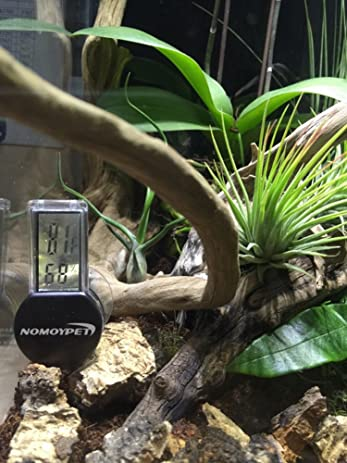 Amazon.com : NOMOYPET Reptile Digital Thermometer and Humidity Gauge with Suction Cup : Pet Supplies