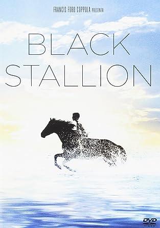 Black Stallion [Italia] [DVD]: Amazon.es: Teri Garr, Mickey Rooney, Carroll Ballard, Teri Garr, Mickey Rooney: Cine y Series TV